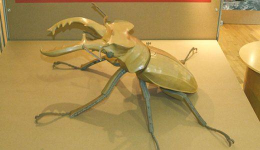 ぐんま昆虫の森 企画展(ミヤマクワガタ)